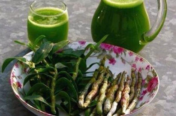 霍山石斛鲜条怎么吃对身体和肾功能有好处