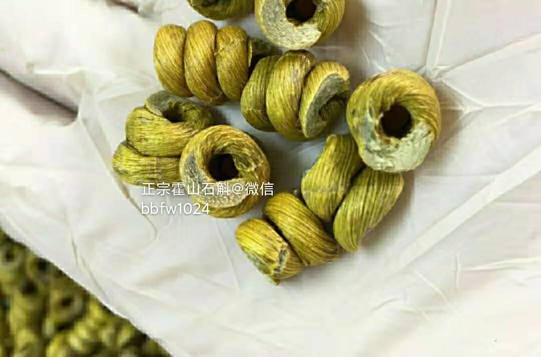 正宗霍山石斛-安徽霍山铁皮石斛
