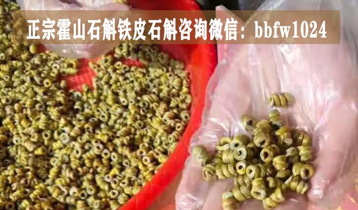霍山米斛真的有效吗,霍山石斛怎样吃是最正确的,霍山石斛有没有效果